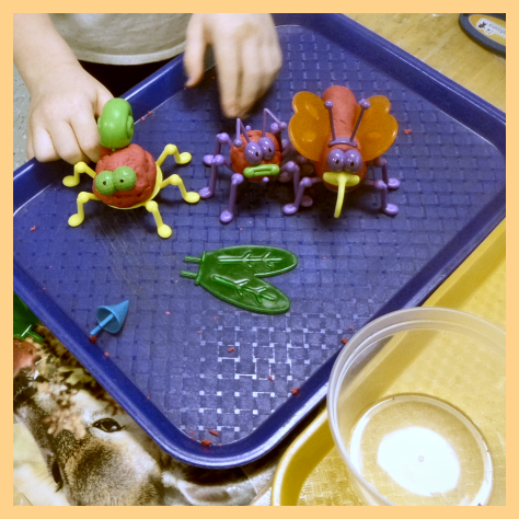 insect playdough
